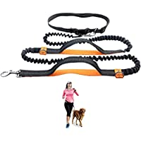 "Durable Hands Free Dog Leash for Running, Walking, Hiking, with Adjustable Waist Belt (Fits up to 47"" Waist) and Shock Absorbing Bungee (CLA-Gray/Orange)"