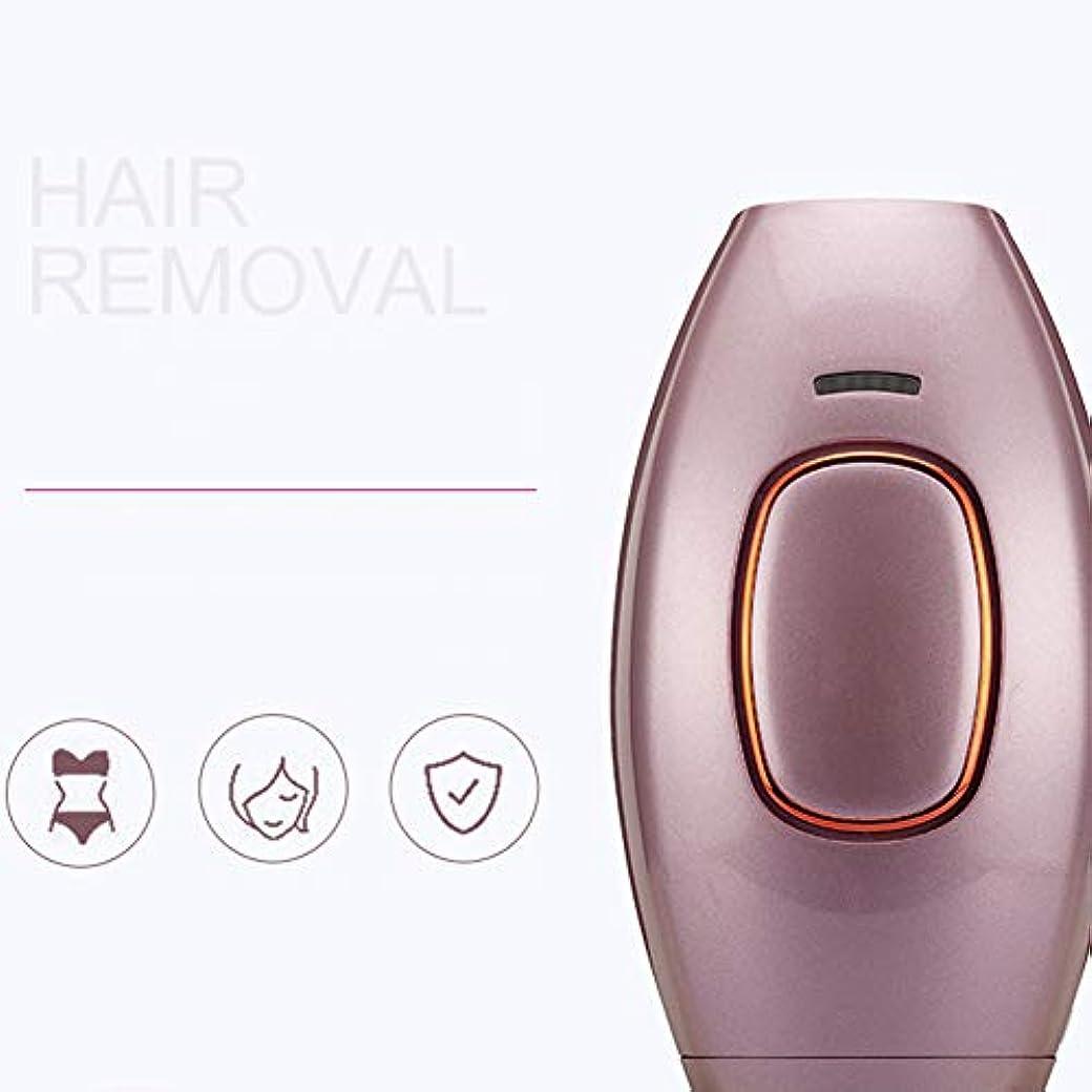 鉄眉をひそめるポール世帯の毛の取り外し装置携帯用痛みのない毛の取り外し装置携帯用小型毛の取り外しシステムこの装置は男性および女性、表面、脇の下、腕、足および背部のために適しています。 Brown