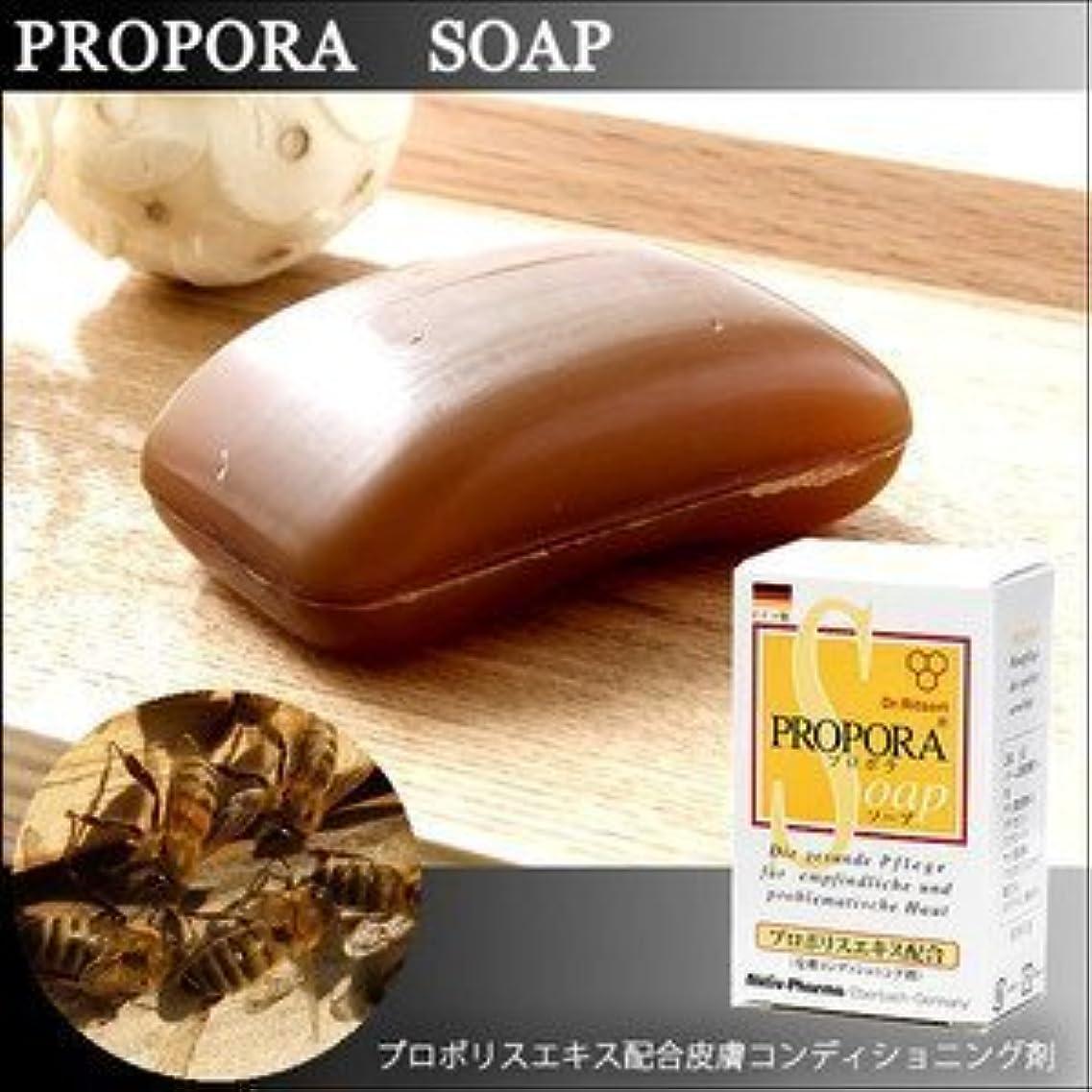 お肌にお悩みの方に 天然由来成分のみを使用したドイツ生まれのプロポラソープ