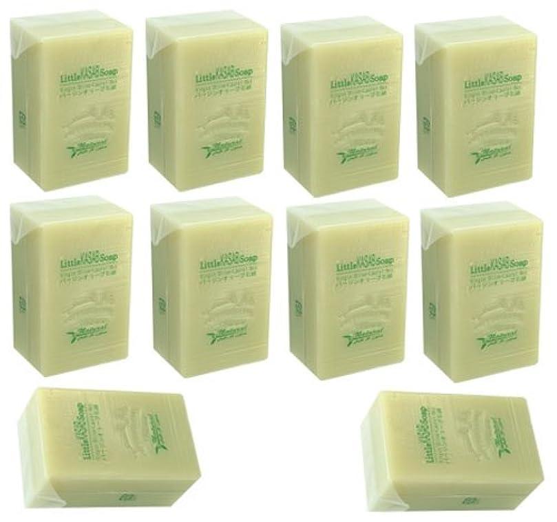 緑寺院起点リトルカサブ石鹸10個セット