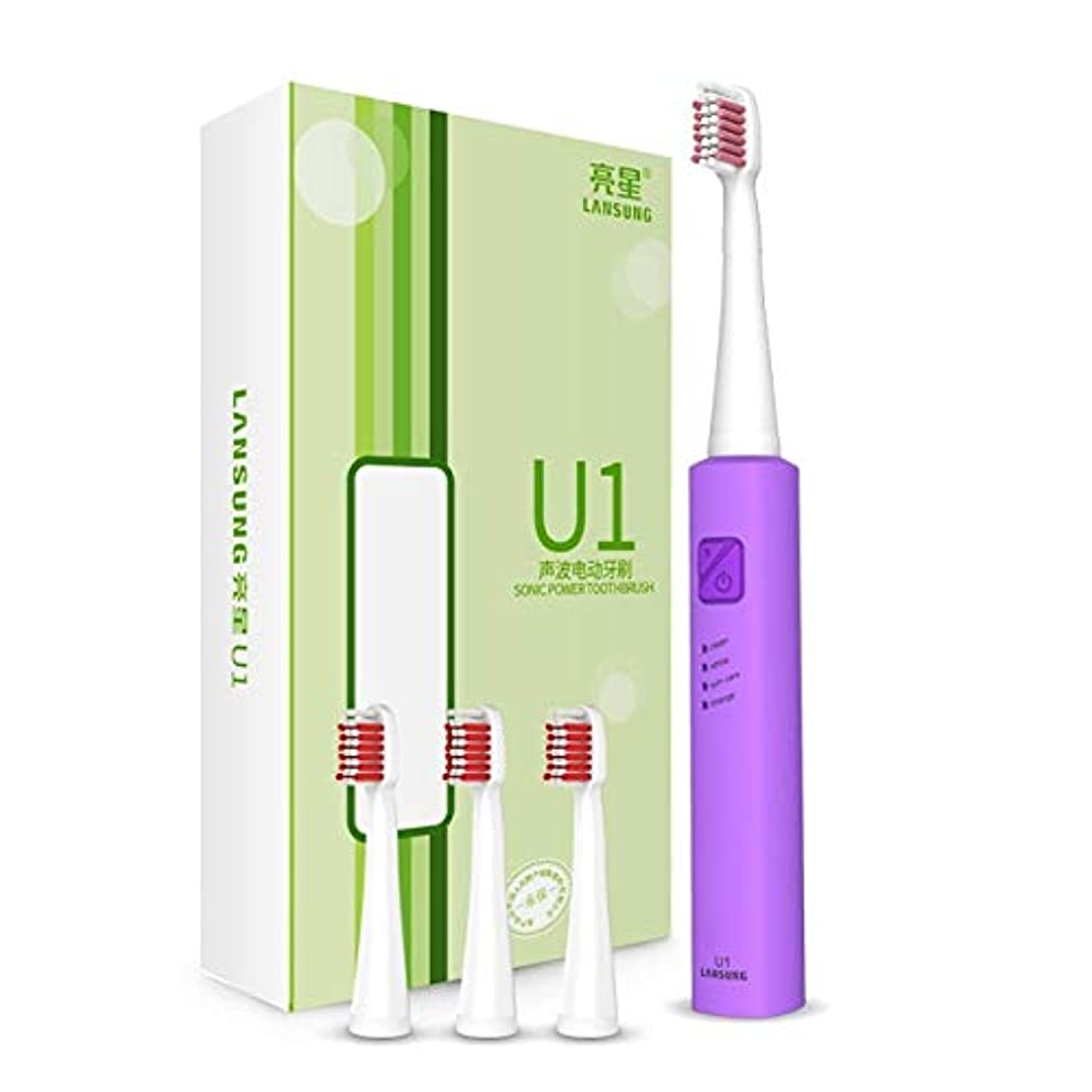 ファン米国見込みYPZHEN 4つのブラシの頭部が付いているLansungの再充電可能な音波の電動歯ブラシの超音波白くなる歯のバイブレーター (色 : 紫の)