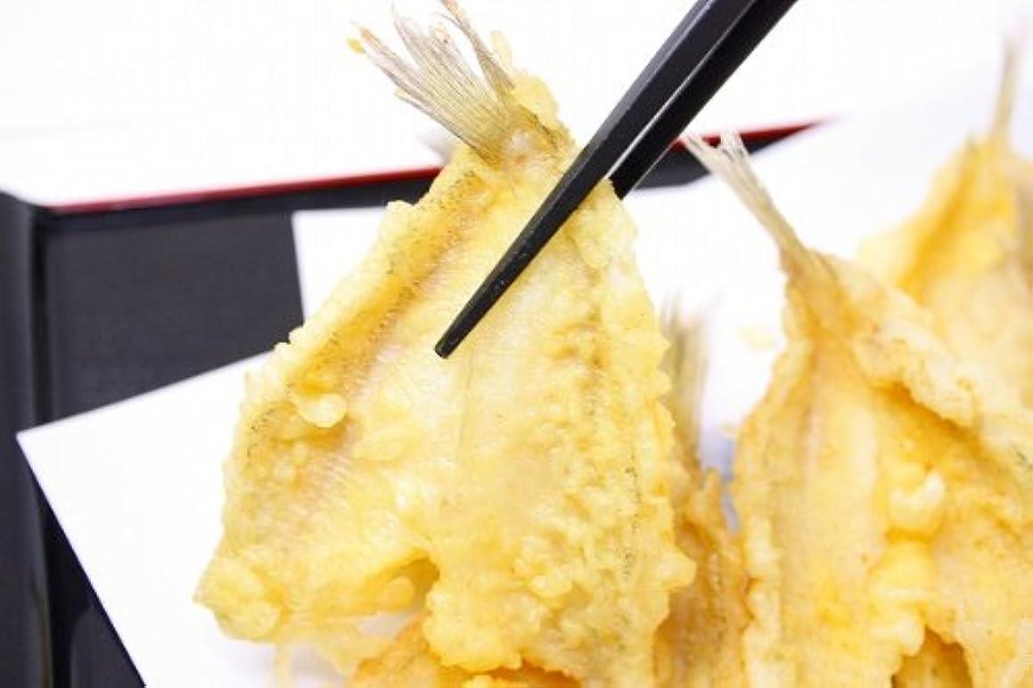 祝福する細分化する分散築地の王様 きす 20尾(550g?開き) きす キス キス天 きす天 きすのてんぷら 天ぷら 天麩羅 天婦羅 業務用 築地 レシピ ギフト