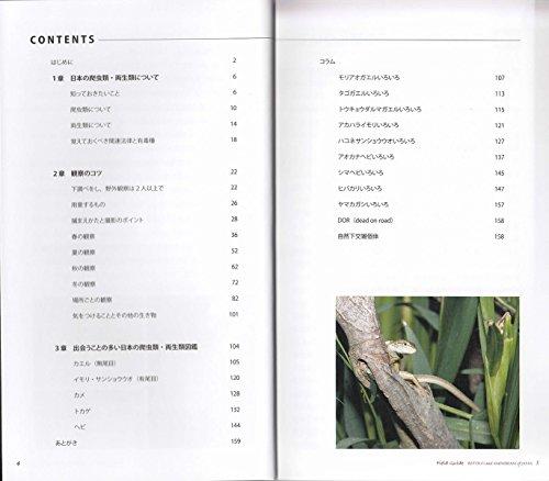 日本の爬虫類・両生類 観察図鑑: 季節ごとの観察のコツ・種類の見分け方がわかる (フィールドガイド)