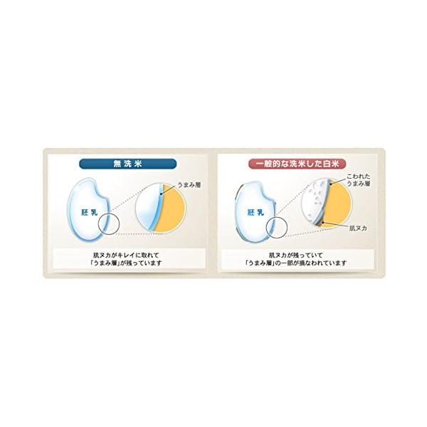 【精米】無洗米 宮城県産 ひとめぼれ 10kg...の紹介画像2