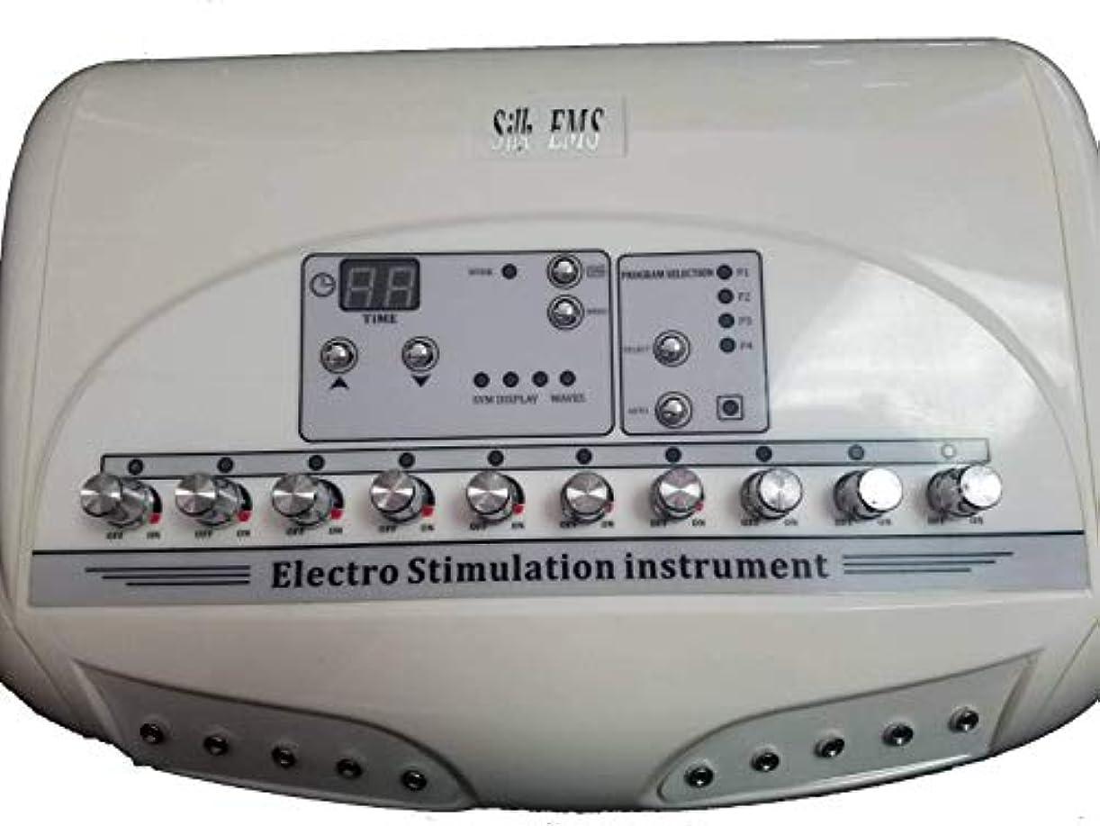 放置電気の反抗業務用10CH EMSマシン シルクEMS