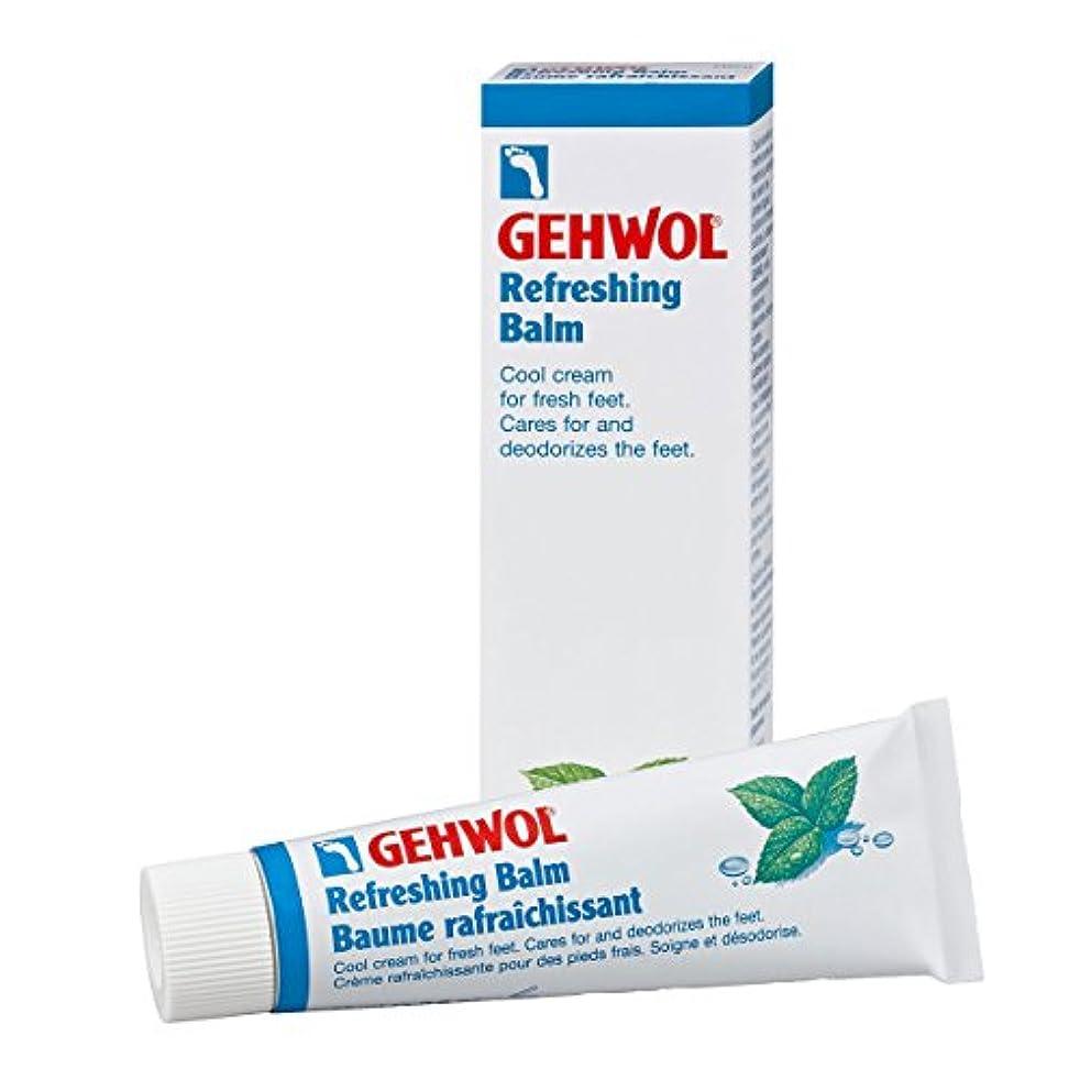 精神的に破滅的な実現可能Gehwol Refreshing Balm 75ml [並行輸入品]