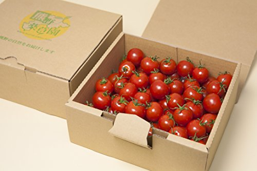 三重県熊野産 採れたてをお届け!真っ赤なミニトマト 約1.2kg