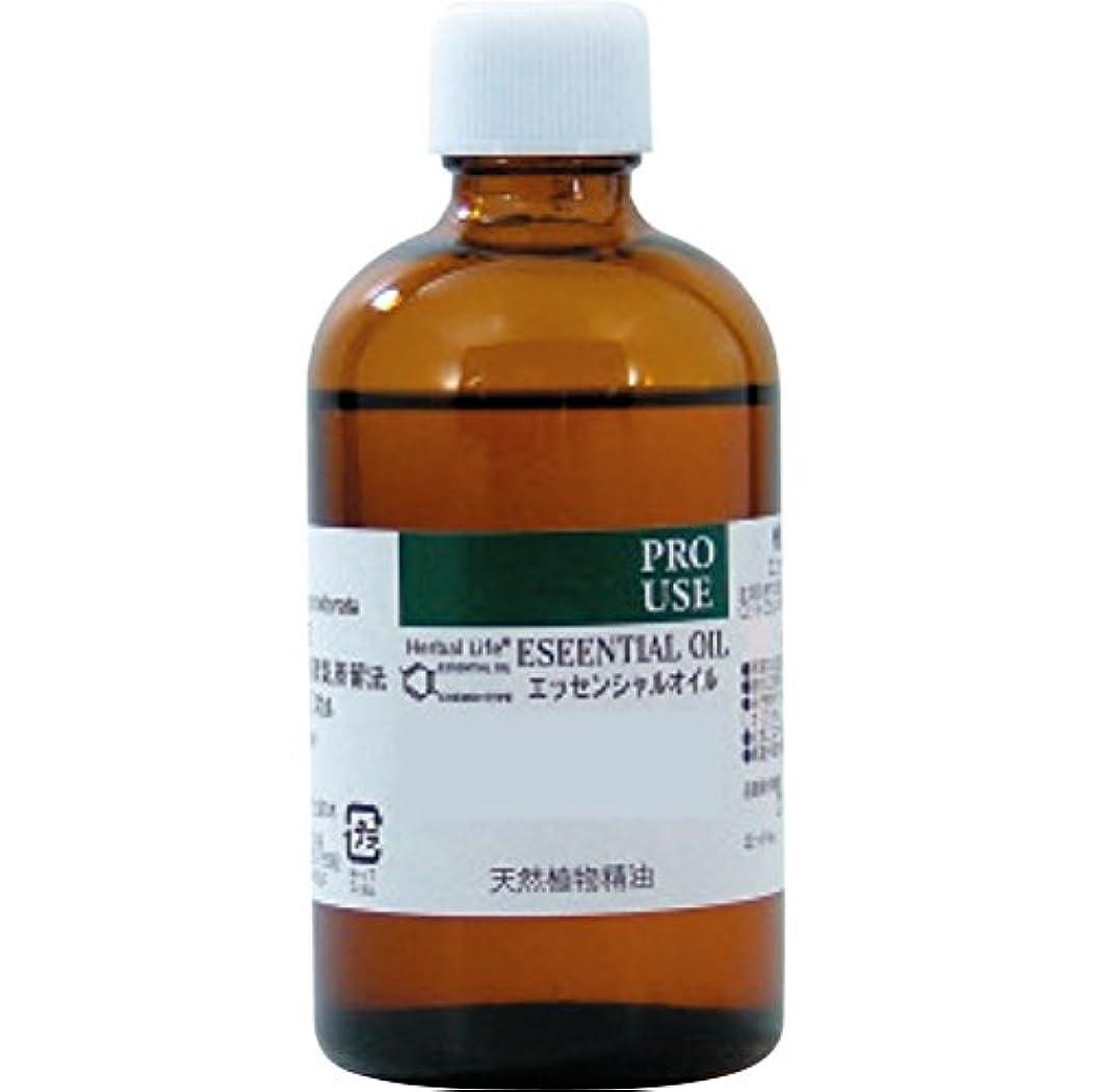 丁寧標準消毒剤Cブラッドオレンジ精油100ml