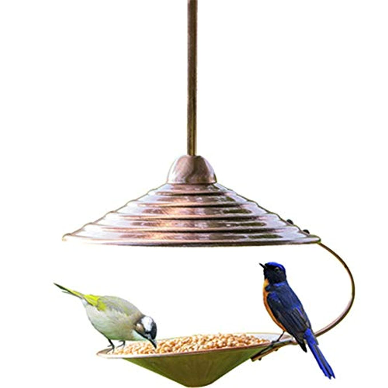 けがをするたまに幸運な鳥の餌箱 メタルバードフィーダーハウス中庭キャビンオープントラディショナルイージークリーニングリフィルバードフィーダーアウトドア用ハンギングデコレーションバードテーブルフリースタンディング 裏庭、庭、窓枠用 (Color : Brass, Size : Free size)