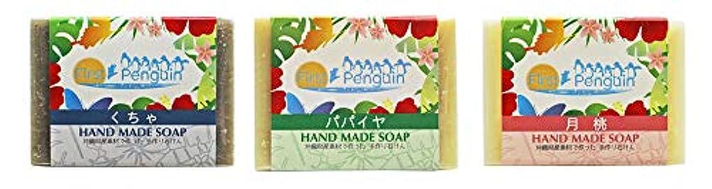 また明日ねありふれた常習者手作り洗顔石けん (くちゃ、パパイヤ、月桃)