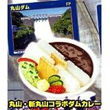 ダムカレー ガチャコレクション [4.丸山・新丸山カレー](単品)