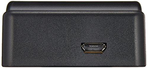 NinoLite USB型 バッテリー 用 充電器 海外用交換プラグ付 パナソニック Panasonic VW-VBK180 VW-VBT380-K VW-VBT190-K 等対応