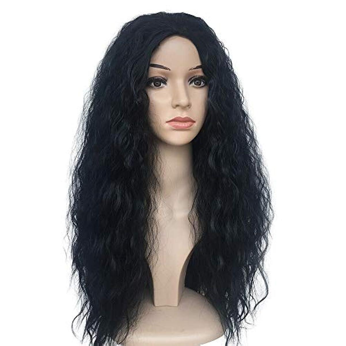 敵対的タンカー謎かつらキャップロングウィッグでかつら女性のためのかつら高品質な人工毛髪コスプレ高密度かつら25.6インチv