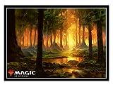 マジック:ザ・ギャザリング プレイヤーズカードスリーブ 『テーロス』《森》 (MTGS-095)