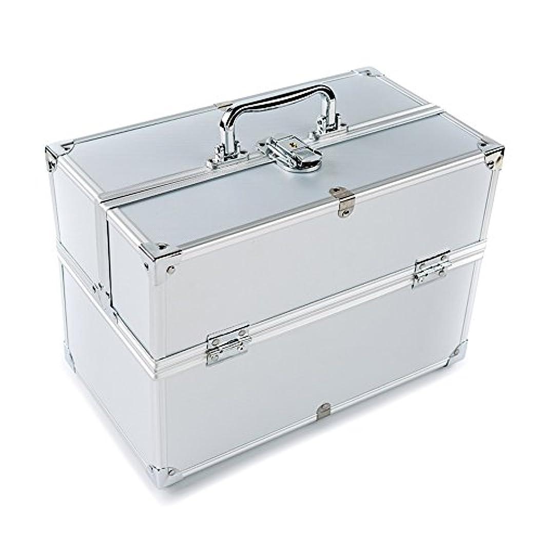 同意する精査損なうMCTECH コスメボックス 薬箱 救急箱 収納ボックス キャリーボックス ネイリスト用バッグ アルミ製 持ち運び 鍵付き シルバー