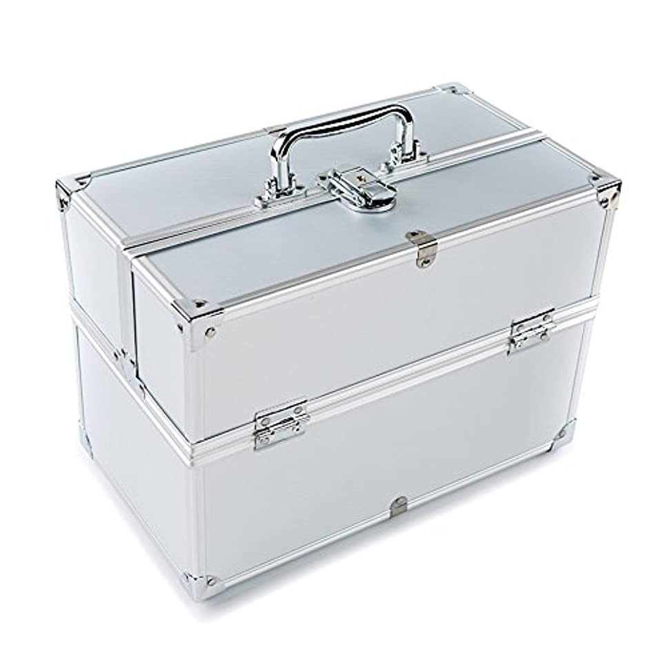 純粋に任命するさらにMCTECH コスメボックス 薬箱 救急箱 収納ボックス キャリーボックス ネイリスト用バッグ アルミ製 持ち運び 鍵付き シルバー