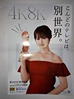 非売品 深田恭子 A3サイズ ポスター 4K8K