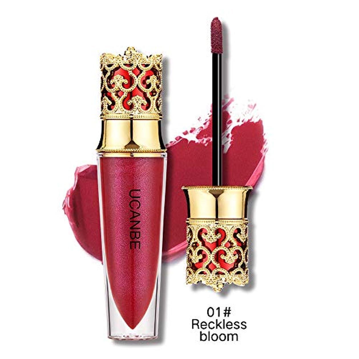 ベスビオ山とんでもない敬意を表する液体口紅モイスチャライザー防水口紅化粧品美容メイク