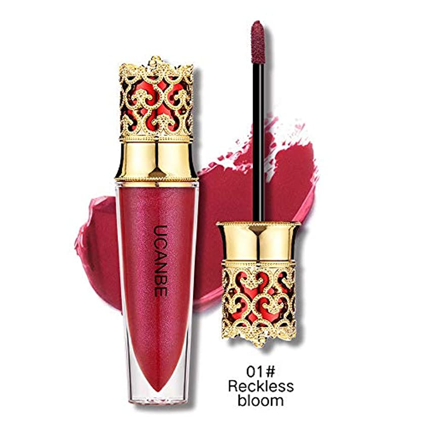 硬化する威信衰える液体口紅モイスチャライザー防水口紅化粧品美容メイク