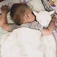 Kavkas ベビー毛布 ブランケット 白ふわふわ 赤ちゃん毛布 かわいい 白 冬 ふわふわ 76x76cm (白い羊)