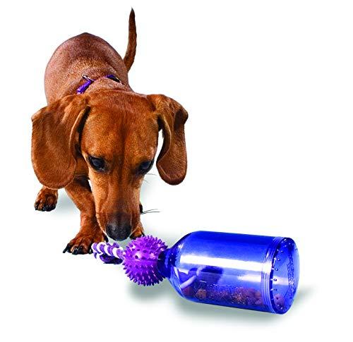 Premier 犬の知育おもちゃ タグアジャグ(Tug-A-Jug) Sサイズ