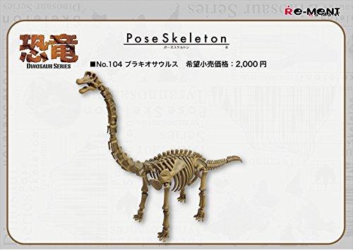 ポーズスケルトン 恐竜シリーズ104 ブラキオサウルス