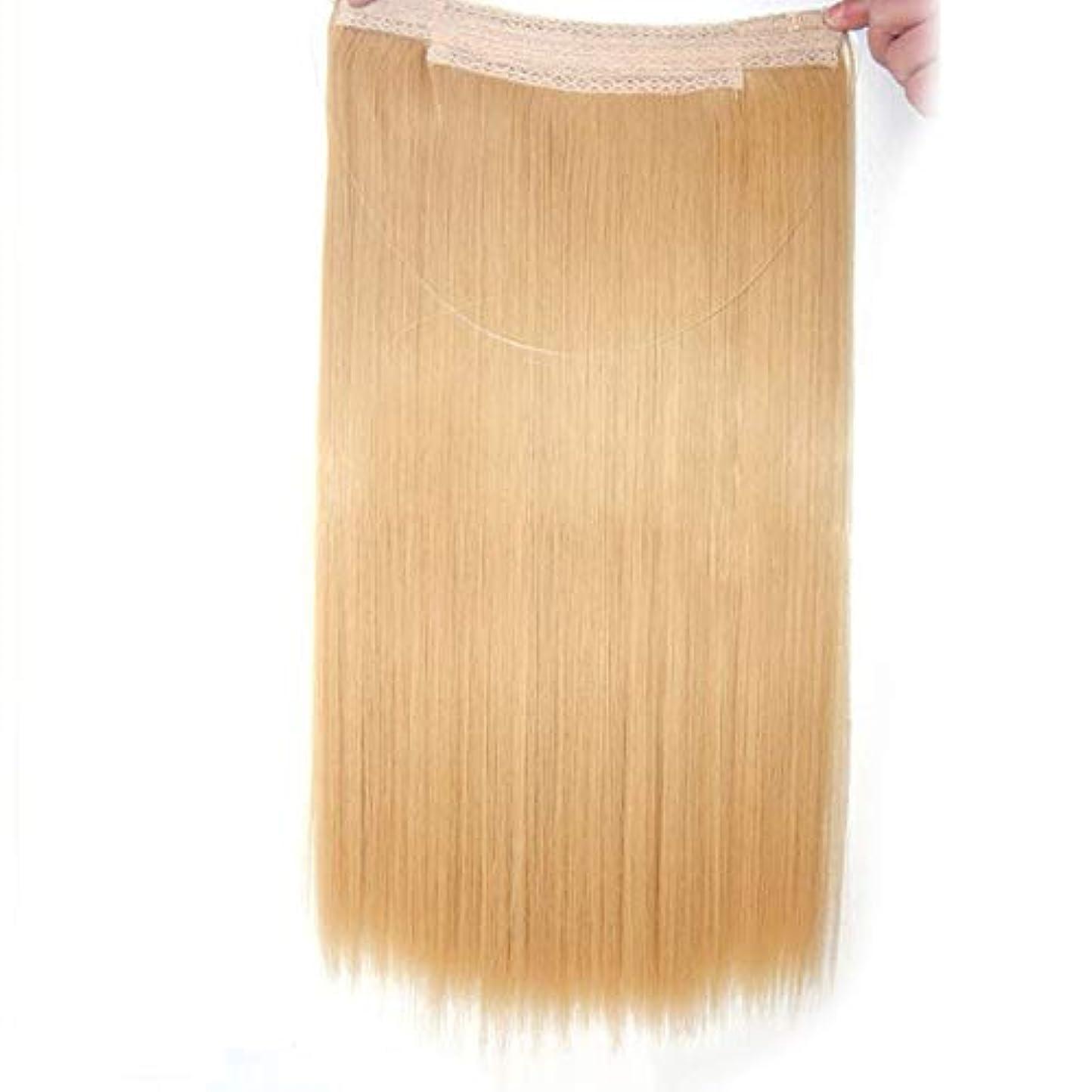 パースアーティキュレーションルビーWASAIO 女性のためのストレート延長ロングかつらブロンドブラウン色のヘアエクステンションクリップのシームレスな髪型隠しワイヤー (色 : Blonde, サイズ : 10 inch)