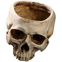 超リアル 頭蓋骨ガラ空き ドクロ 髑髏 インテリア イベント 小道具 骨 模型 植木鉢 スカル TEC-GARADOKUD