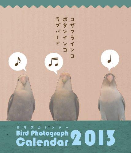コザクラインコ・ボタンインコ ラブバード鳥写真カレンダー2013