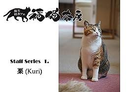 [舟橋 みを子]の福猫茶房 スタッフシリーズ1 栗