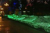 妖精メッシュ弦ライト、LEDウィンドウ妖精弦ライトリモコン付き、2 * 2メートル8モードusb給電星空ライト用クリスマス green