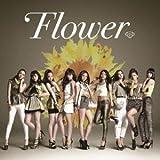 太陽と向日葵 / Flower