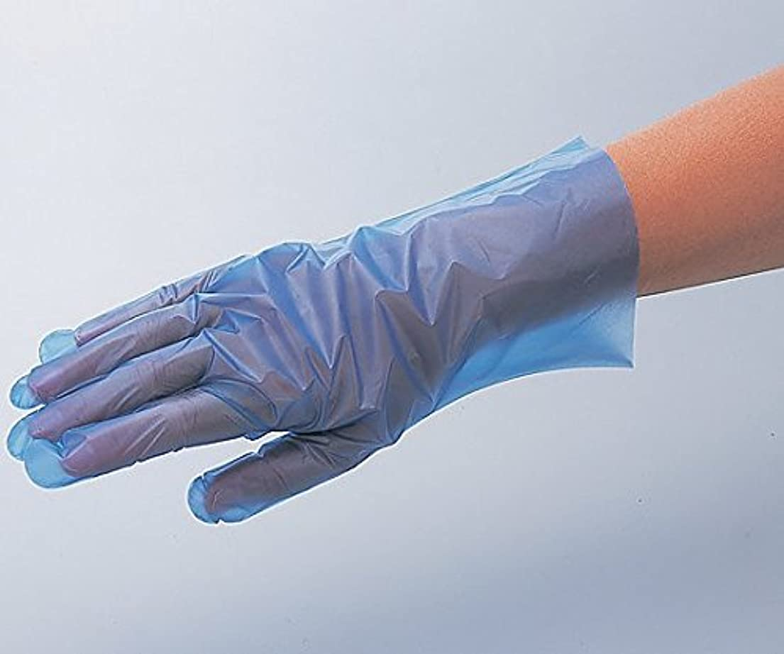 日帰り旅行に剥ぎ取る防腐剤アズワン6-9730-06サニーノール手袋エコロジーブルーショートS200枚入