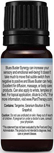 『Plant Therapy Essential Oils (プラントセラピー エッセンシャルオイル) ブルース バスター シネジー エッセンシャルオイル ブレンド』の1枚目の画像