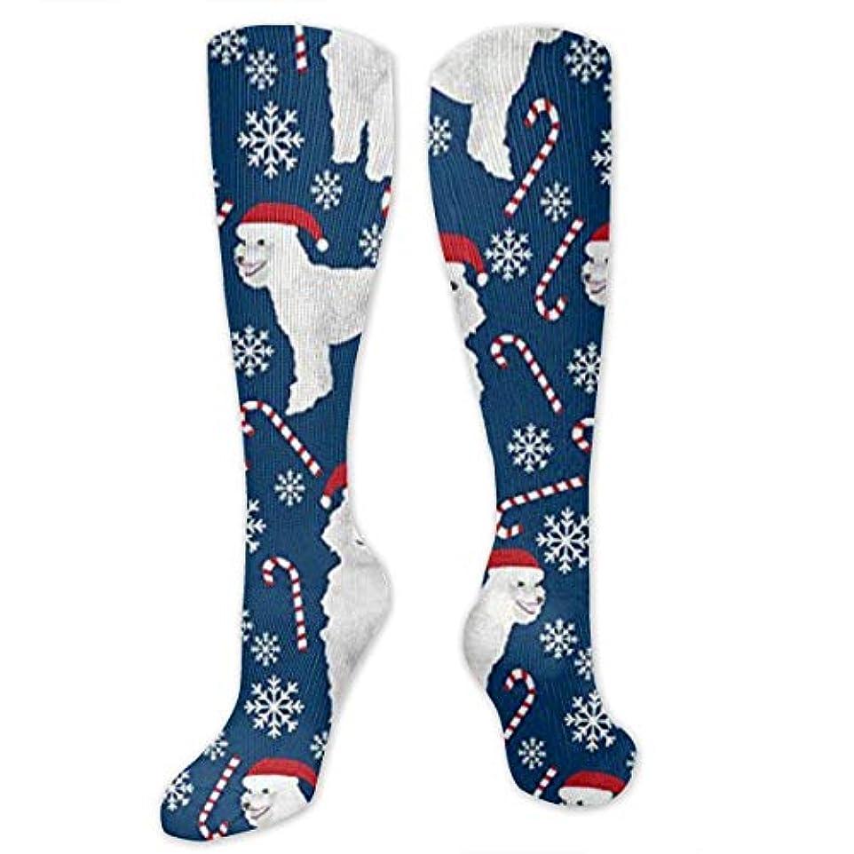 広々としたピンチ錆び靴下,ストッキング,野生のジョーカー,実際,秋の本質,冬必須,サマーウェア&RBXAA Candy Canes Cute Poodles Dogs Socks Women's Winter Cotton Long Tube...