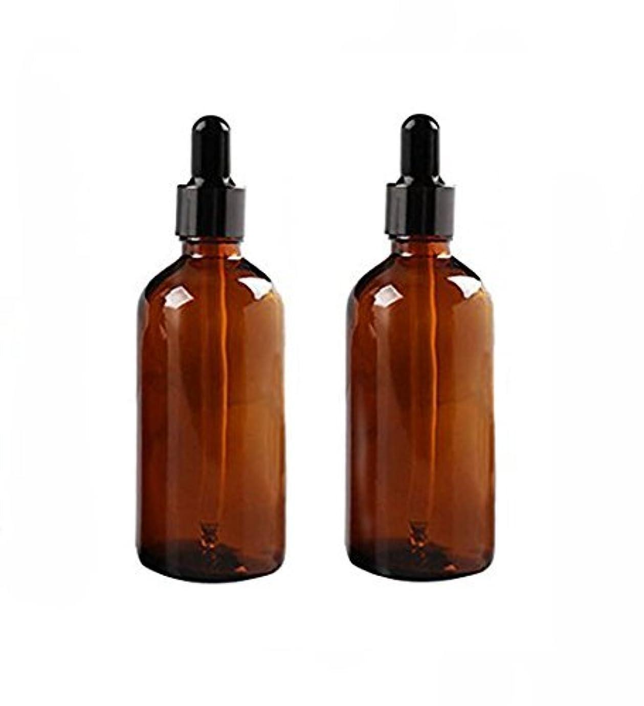 うれしいビバ家庭2 Pcs 100ml Empty Amber Glass Bottle with Glass Dropper for Essential Oil Formulas [並行輸入品]