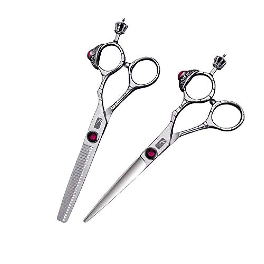 危険な所属傷つきやすい6インチ美容院プロのヘアカットセット、絶妙なデザインフラットシザー+歯シザーセット ヘアケア (色 : Silver)