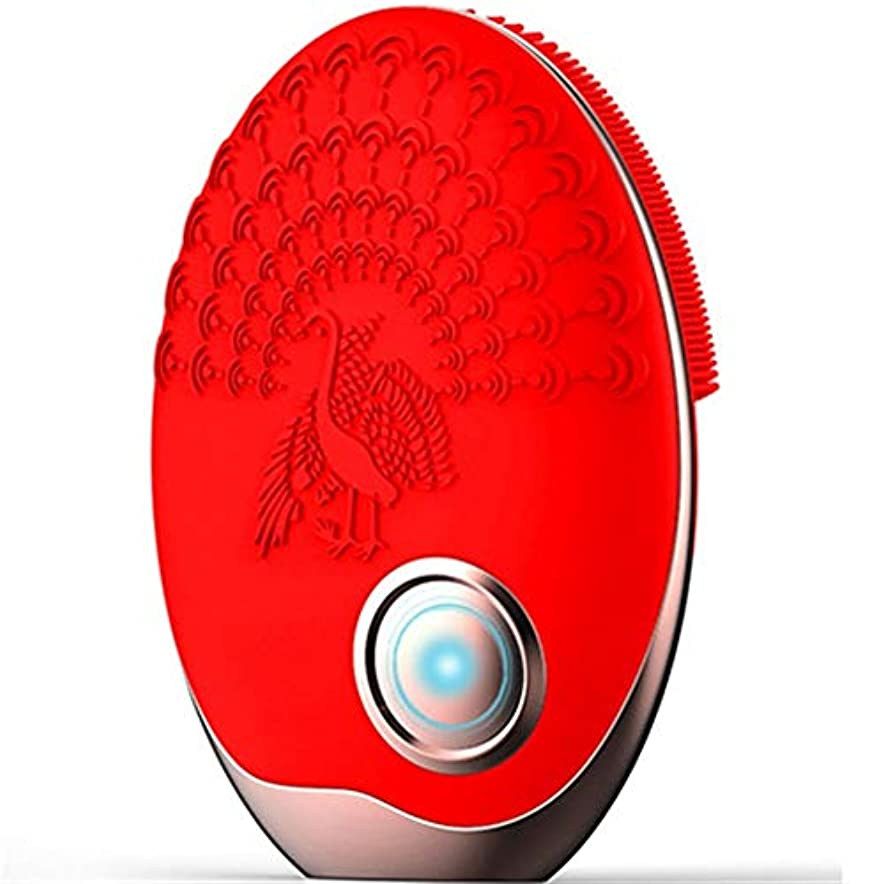 時々時々復活スマイルZHILI 洗顔ブラシ、ワイヤレス充電クレンジング美容器具、電気掃除用ブラシ、超音波振動洗浄用ブラシ、シリコーン洗濯機 (Color : Red)