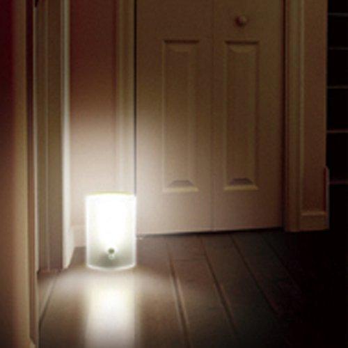 アイリスオーヤマ 乾電池式LEDセンサーライト BSL-05W