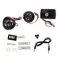 Lovoski 実用的 オートバイ オーディオスピーカー USB SD  FM ステレオ MP3プレーヤーアンプ DC 12V