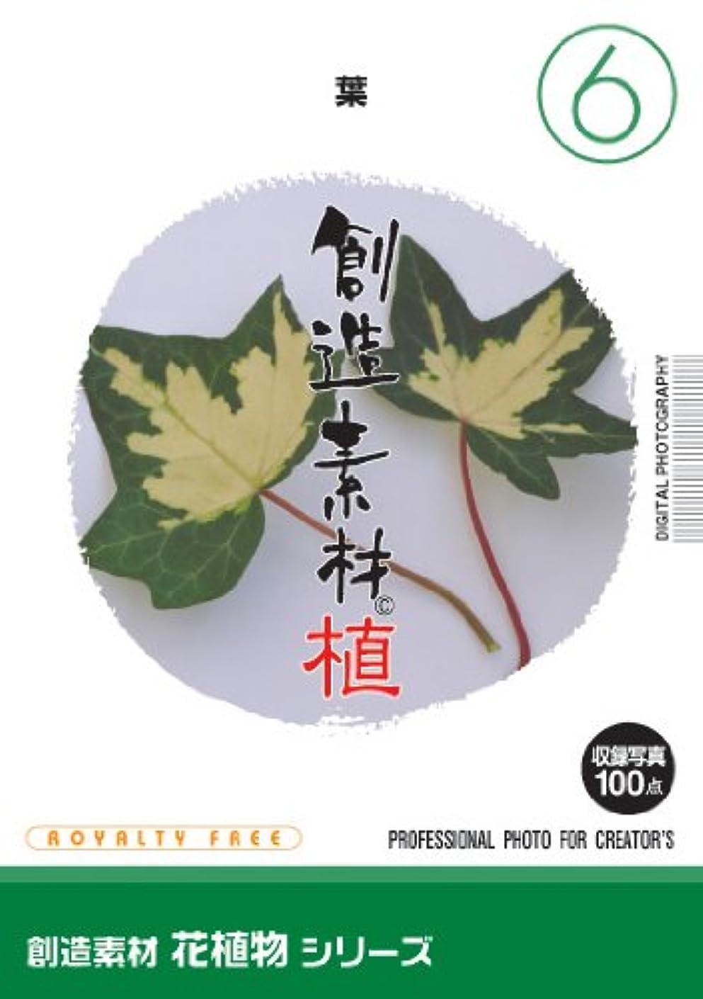 操作可能必需品スラダムイメージランド 創造素材 花植物(6)葉