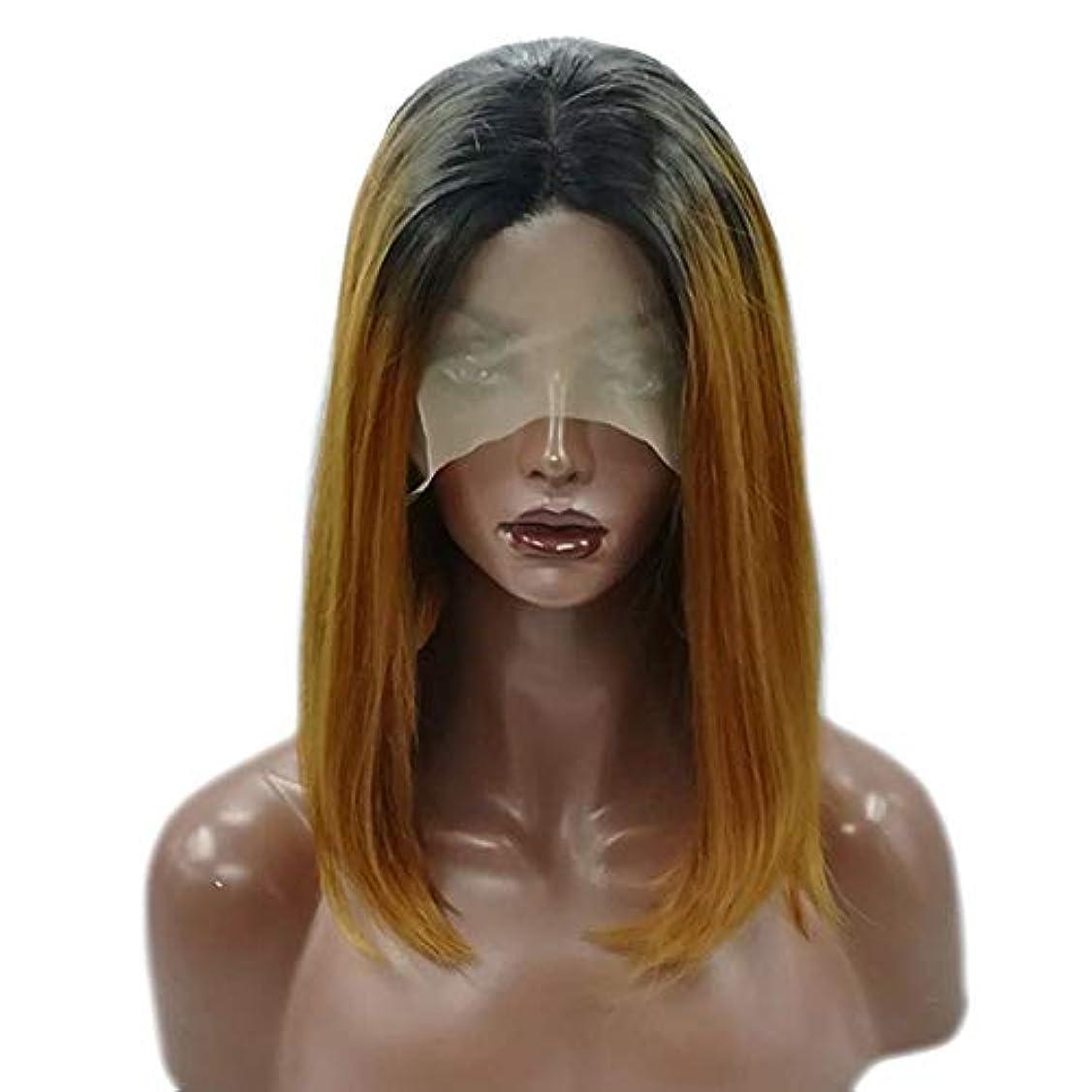 非難する埋め込む深遠YOUQIU 女子ショートストレートウィッグ肩の長さ黒合成ボブヘアウィッグ耐熱フル?ヘアウィッグウィッグ (色 : Photo Color)