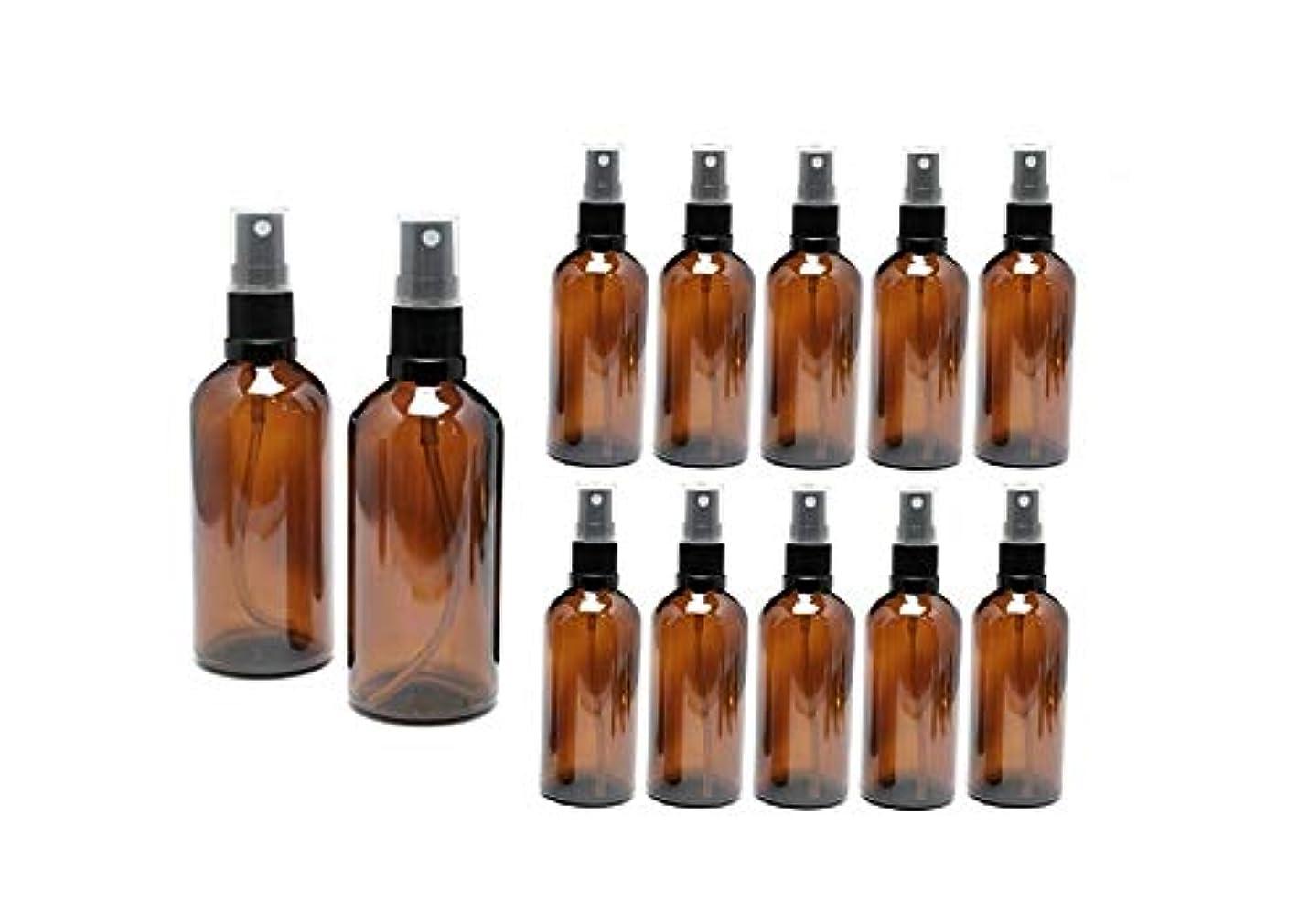 多くの危険がある状況無一文木遮光瓶 スプレーボトル 100ml アンバー/ブラックヘッド(グラス/アトマイザー) 【新品アウトレット商品 】 (4) 12本セット