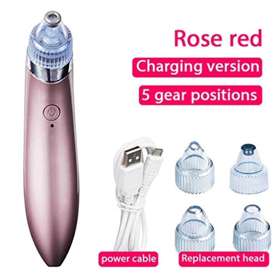 瞬時に国ハンディブラックヘッドメイクアップリムーバー電気ボア真空USB充電式ブラックヘッドニキビツール、3つの調整可能な強度と5つの交換可能なプローブ(オスとメス用)