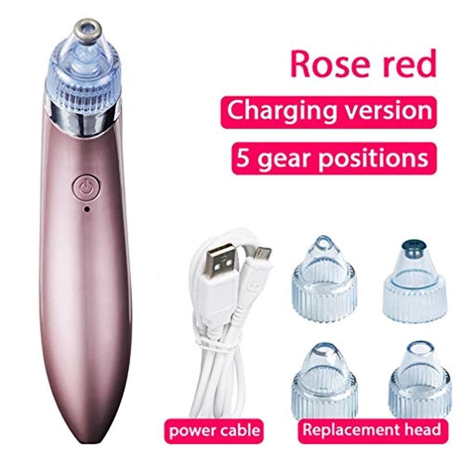 忠誠ゆり概念ブラックヘッドメイクアップリムーバー電気ボア真空USB充電式ブラックヘッドニキビツール、3つの調整可能な強度と5つの交換可能なプローブ(オスとメス用)
