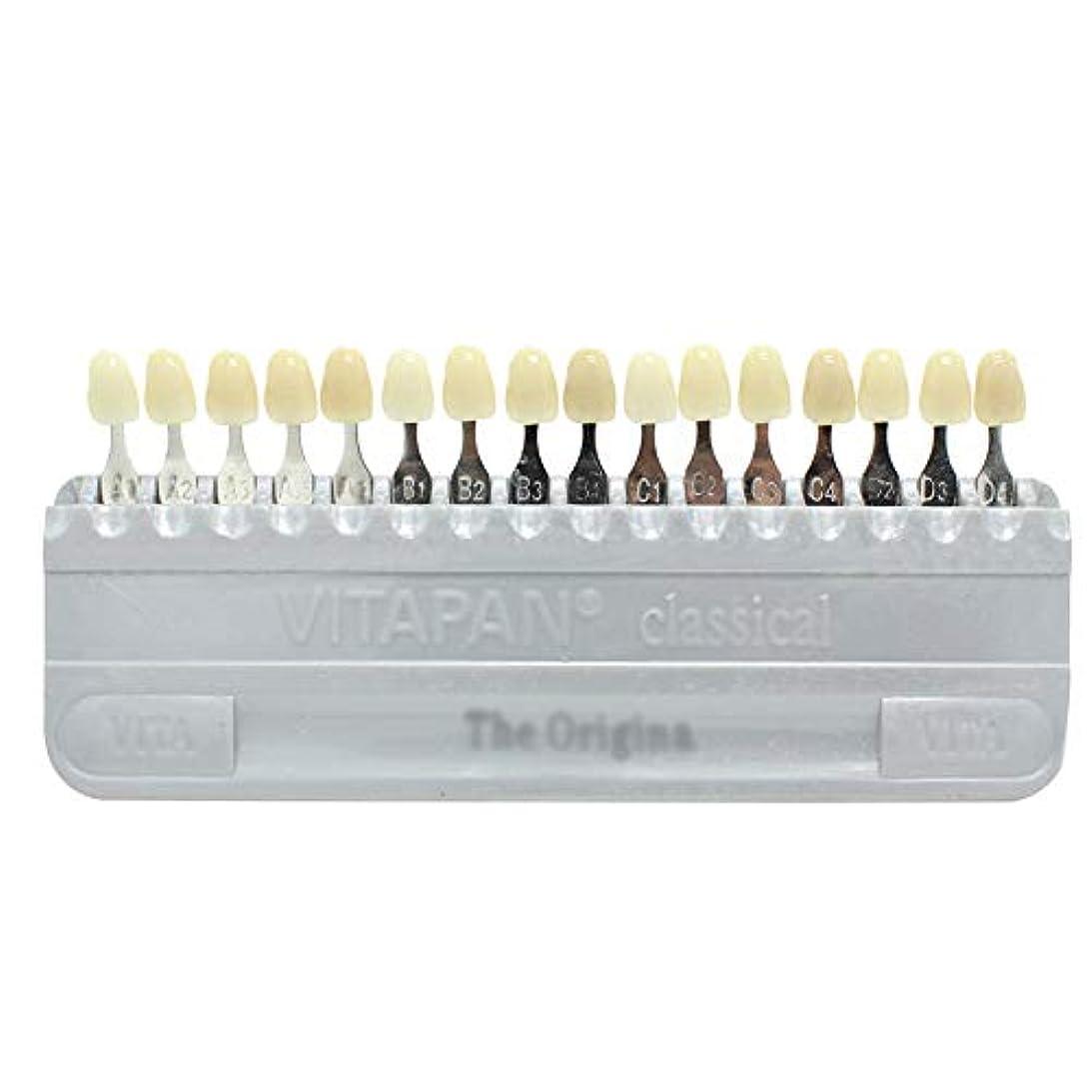 きらきら信じられない予防接種PochiDen 歯科ホワイトニング用シェードガイド 16色 3D 歯列模型ボード
