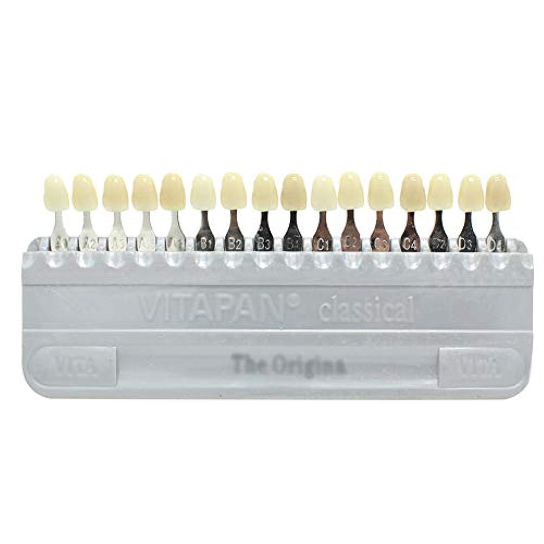 プラス健康的検出PochiDen 歯科ホワイトニング用シェードガイド 16色 3D 歯列模型ボード