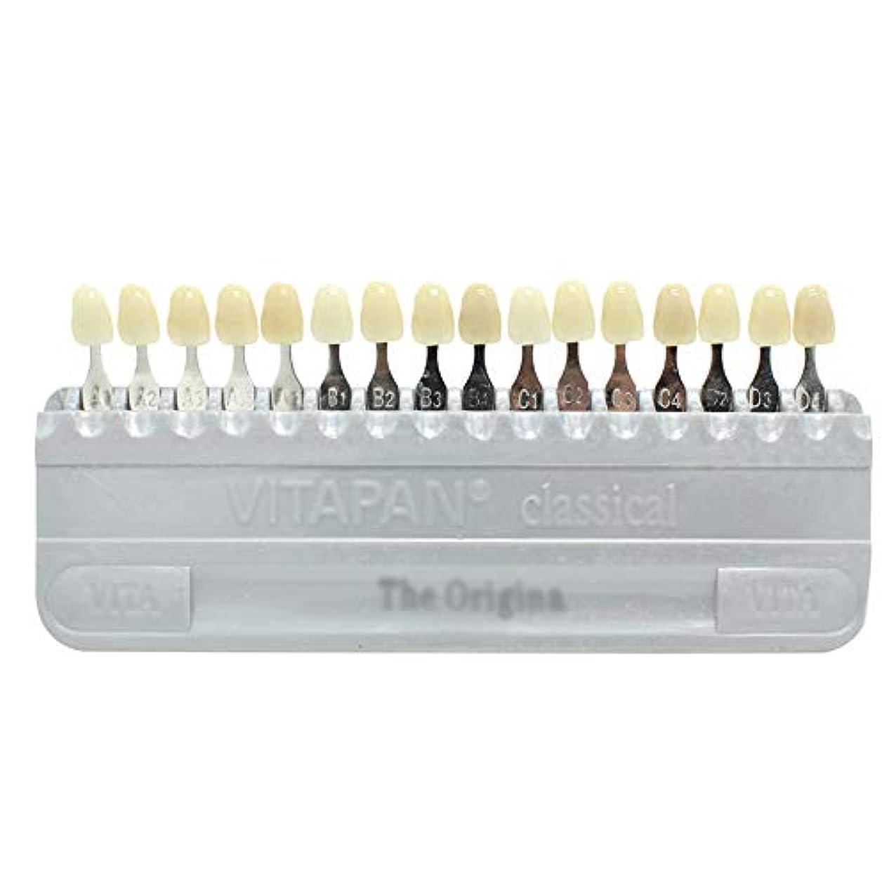 ワイプ溶かす興奮するPochiDen 歯科ホワイトニング用シェードガイド 16色 3D 歯列模型ボード