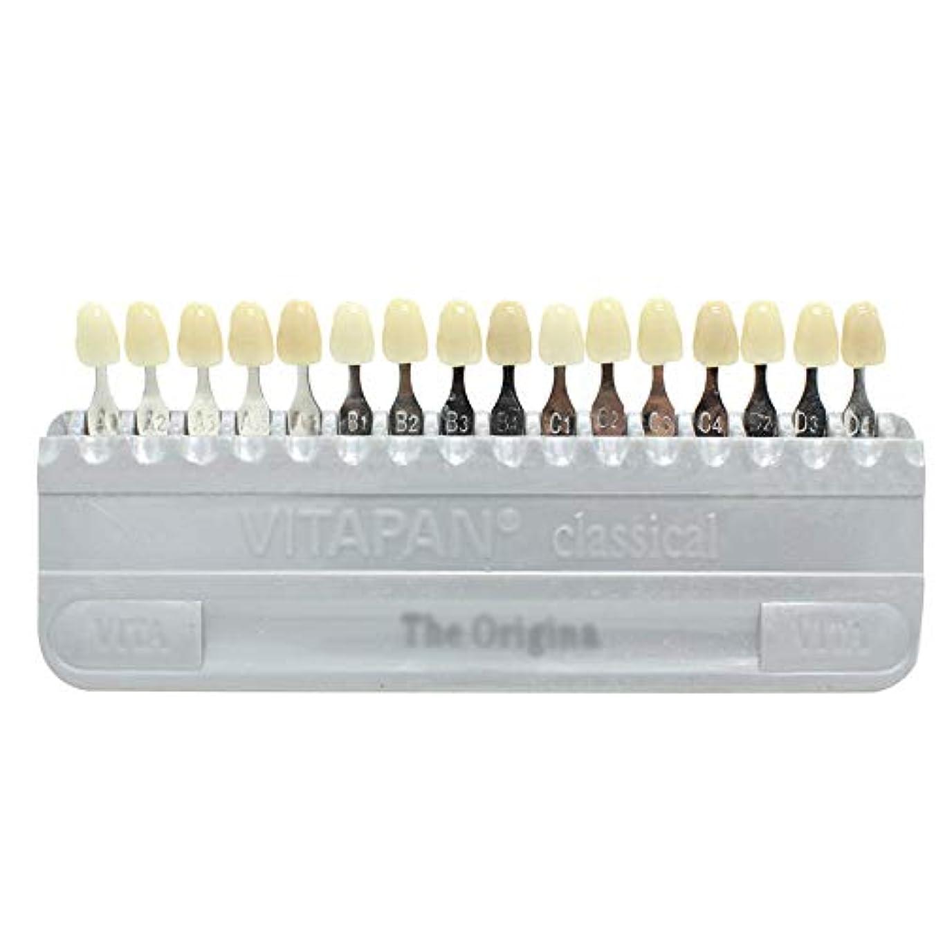 巻き取り行商人ささやきPochiDen 歯科ホワイトニング用シェードガイド 16色 3D 歯列模型ボード