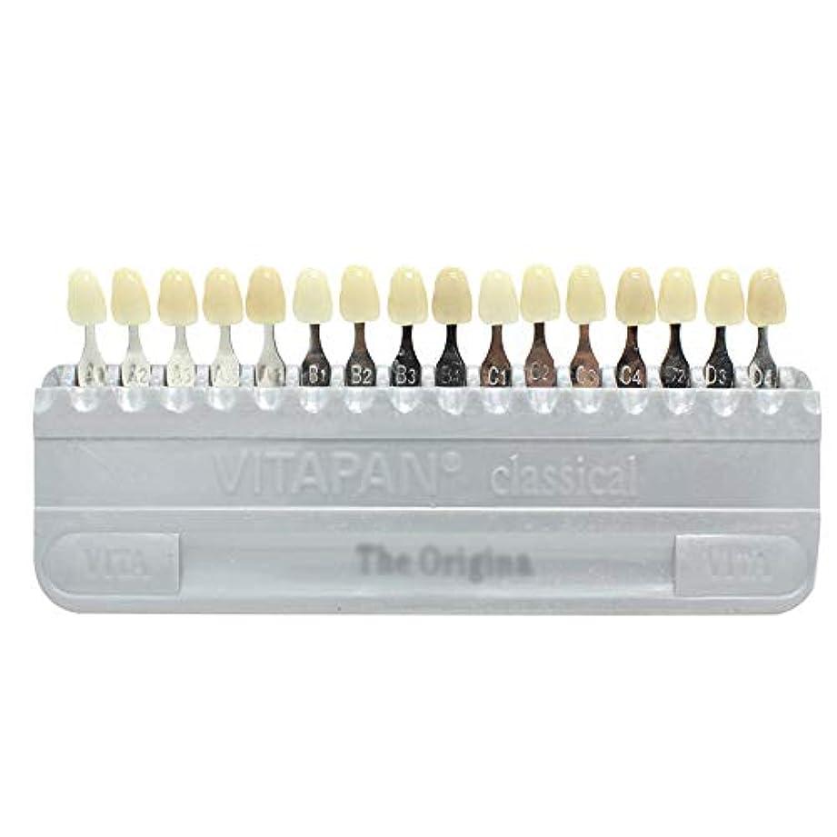 制限博覧会教PochiDen 歯科ホワイトニング用シェードガイド 16色 3D 歯列模型ボード